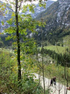 Walking in the woods near Ramsau, Germany