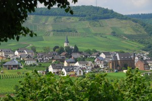 Lunch in a special spot above the Mosel River and a visit to Germany's best castle wrapped up the adventure.